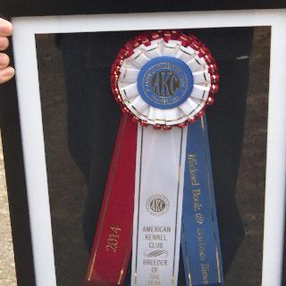Rosette in shadow box